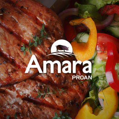Portada Proyecto web_Amara.jpg