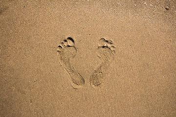 traces-pas-dans-sable_117872-63.jpg