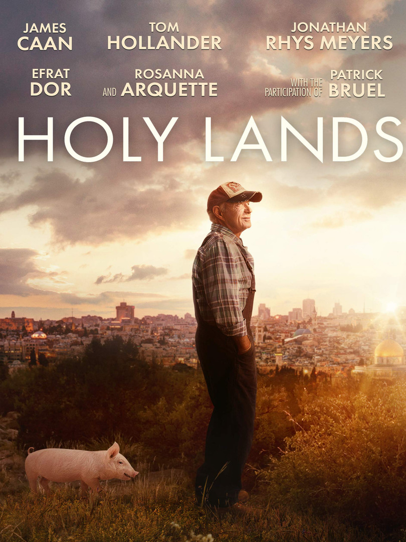 The holly lands