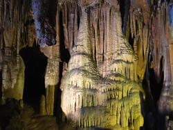 Florida Caverns State ParkCouplescience Virtual Couples Coaching Kathleen Anderson LMHC LLC