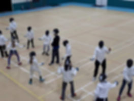Auckland Fencing Class