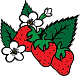 strawberry clip art.png