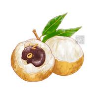 """LongAn """"Dragon Eye"""" Fruit"""