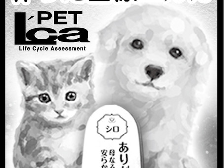新聞広告:エルカ・ペット