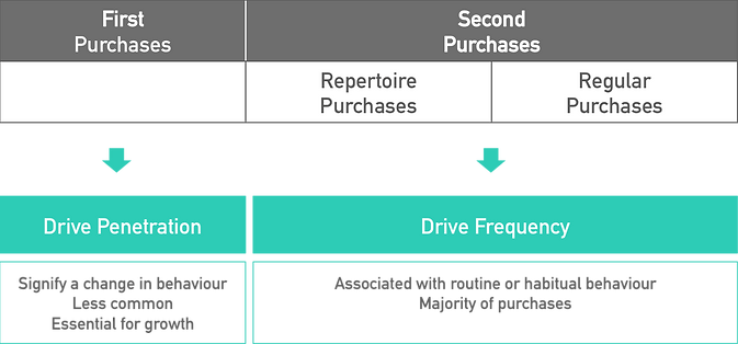 Purchase Outcomes Framework