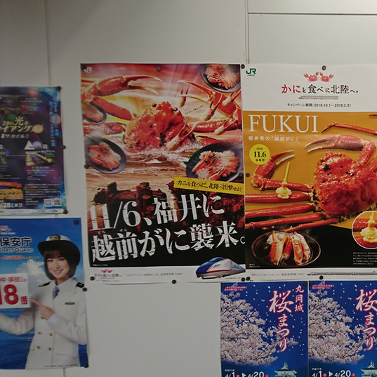 many seafood ads for tourists