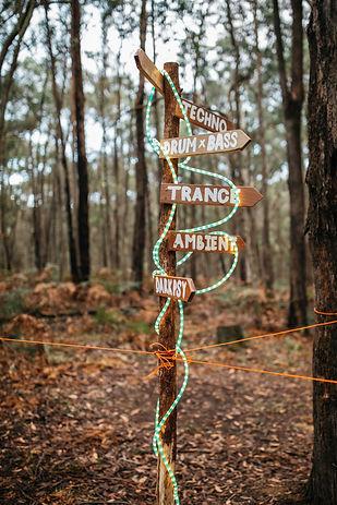 Forest Doof - 10-4-11-4-49.jpg