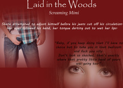 Teaser Laid in the Woods