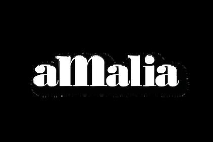 AMALIA-MTY-Logotipo-2018.png