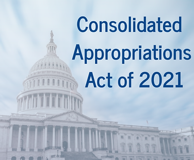 Consolidated-appropriations-act-696x696.