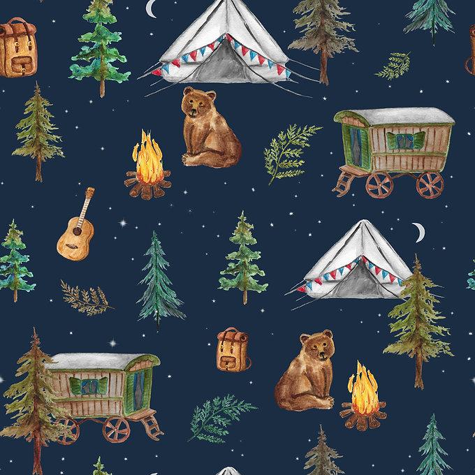 Grizzly tales - tatra.jpg