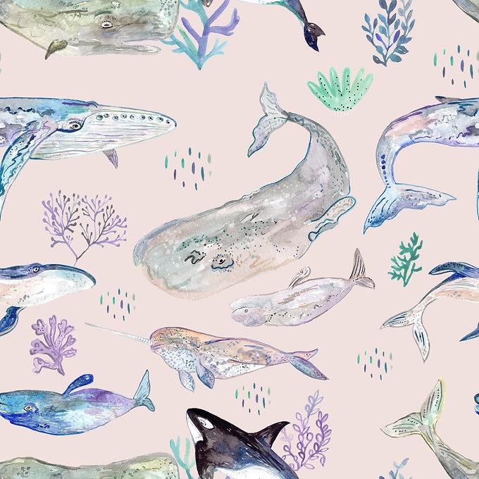 Whales of the world - Wishbone.jpg