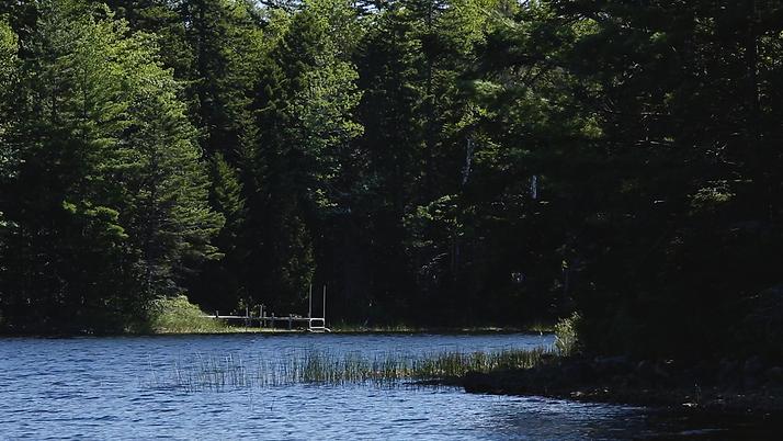 Lone Dock Howard Lake copy.png
