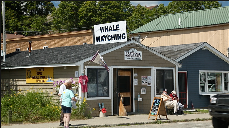 Whale Watching Eastport.png