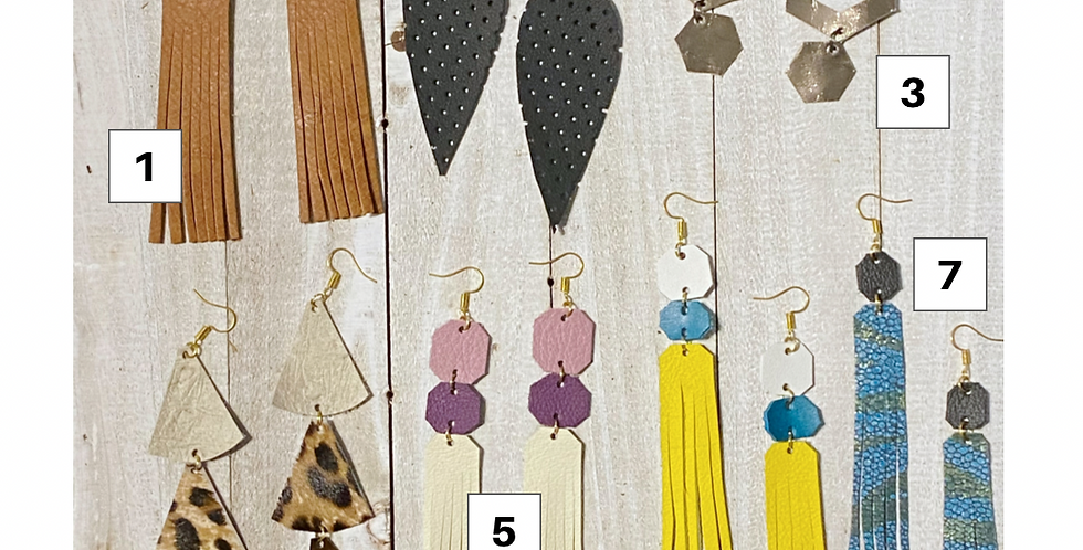 $20 Earring Collection