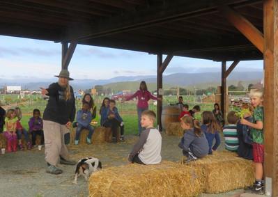 EDU: On the Farm