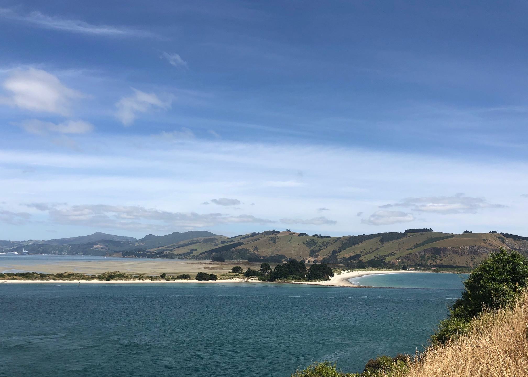 Península de Otago, dunedin,