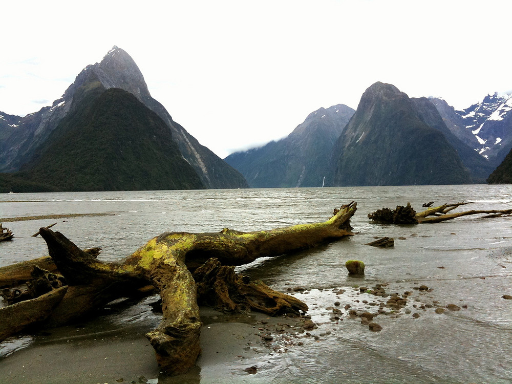 Milford Sound Track/TRAILSOURCE.COM
