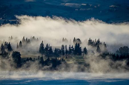 niebla queenstown