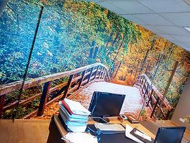 wallwrap forest