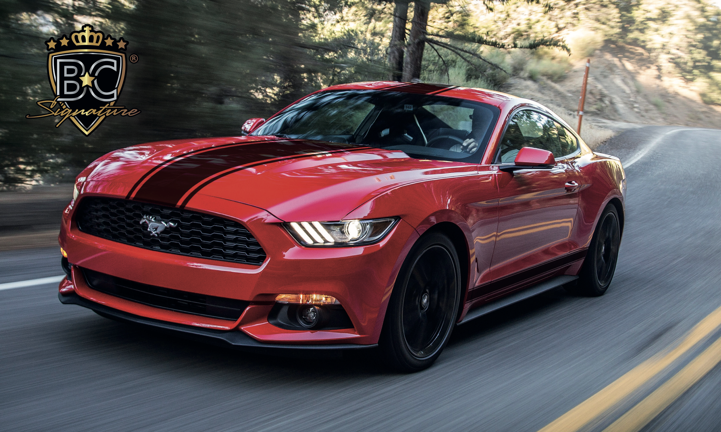 Mustang Striping 1