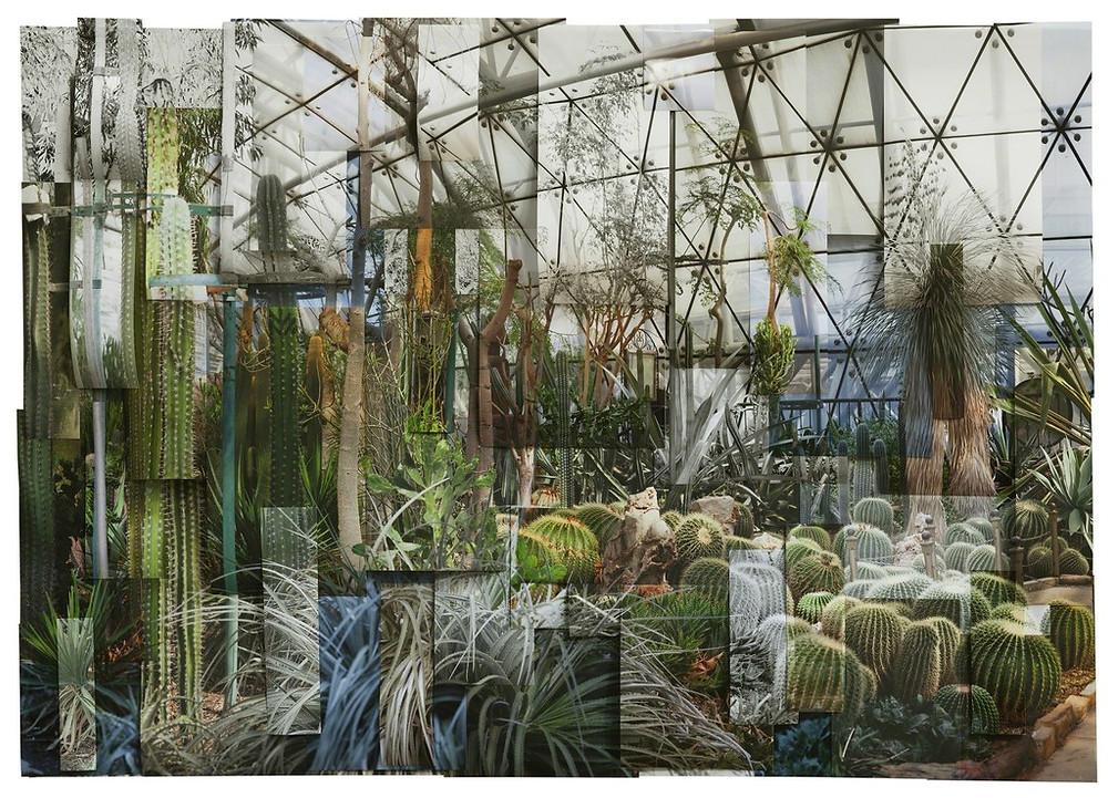 Ji Zhou - Greenhouse 1