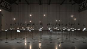 Artist of The Day | Shilpa Gupta