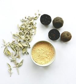 White Sage Tea Infusion