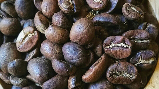 Costa Rica Amapola Coffee (Terrazu Region).
