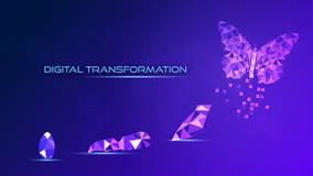 Află ce înseamnă transformarea digitală și cum îți poate revoluționa afacerea