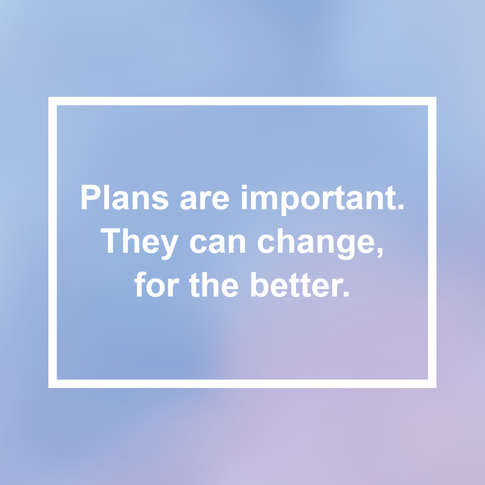 Plans and change