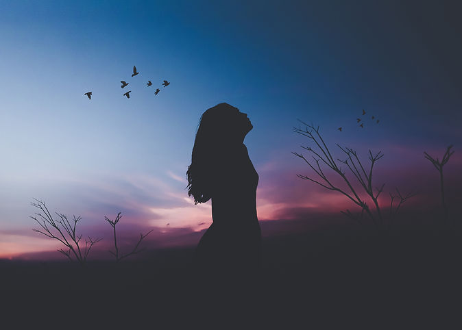 alone-3456x3392-woman-birds-silhouette-h
