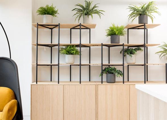 bamboo-zoning-furniture-2.jpg
