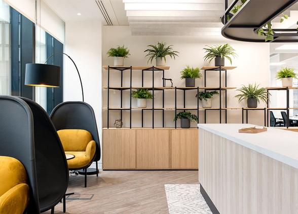 bamboo-zoning-furniture-1.jpg