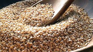 Sesame-Seeds (2).jpg