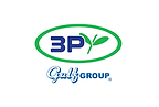 3P Gulf Group logo.png