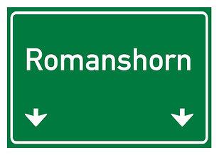 Romanshorn.jpeg