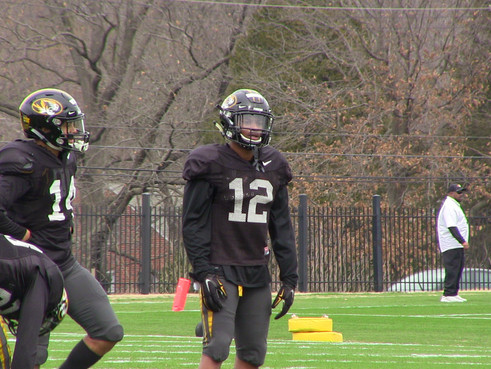Tiger Position Preview: Receivers
