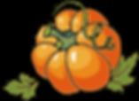 Cute Pumpkin Clipart 22605.png