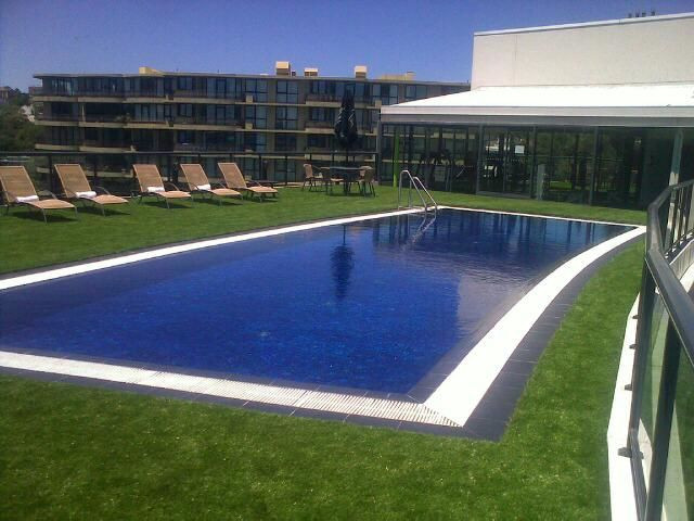 Sydney Artificial Turf and Hedging 2.jpg