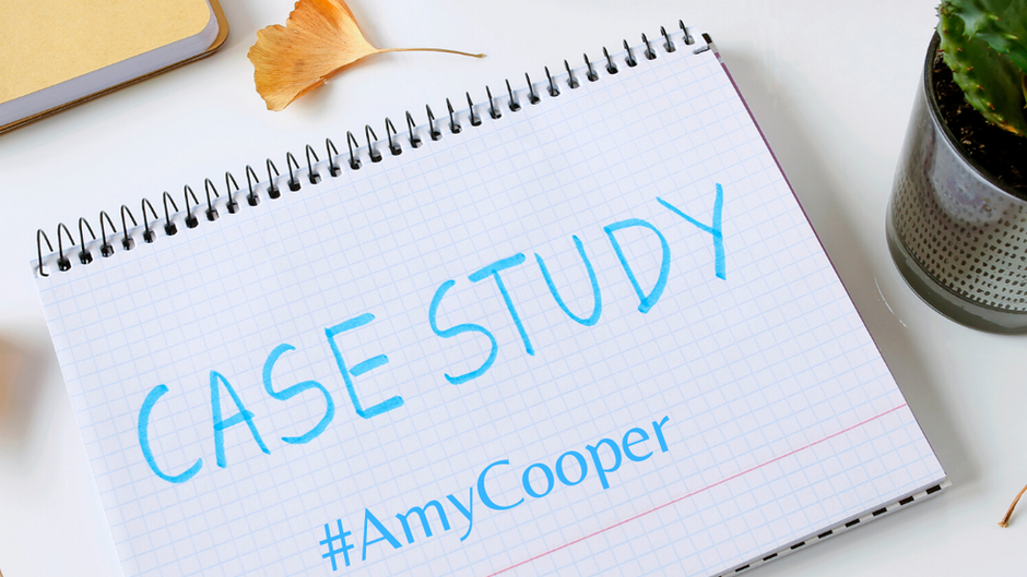 #AmyCooper Should Be A Required Case Study for Workplace Equity & Inclusion