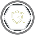 ICON-SHIELD1.png