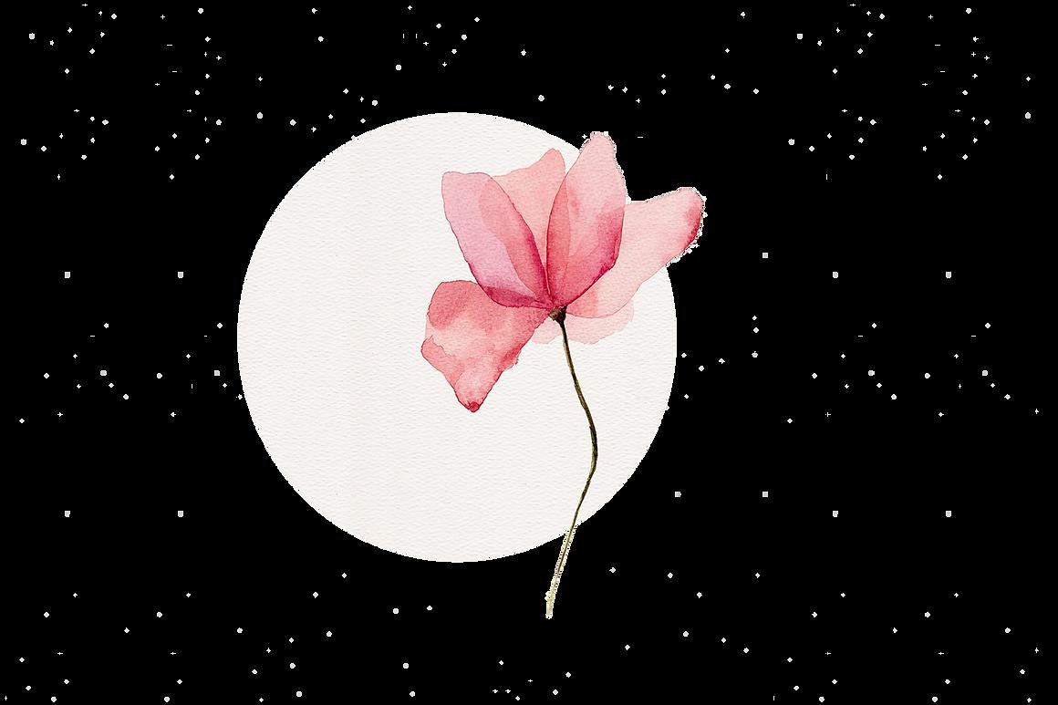 fleuriste le chant des fleurs franois