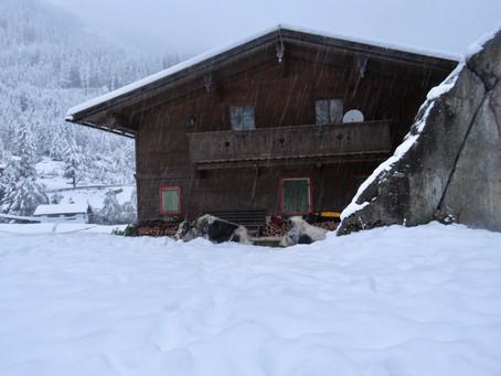 Dans la neige à Breitlahner