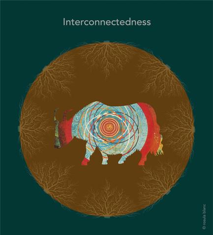 interconnectedness.jpg