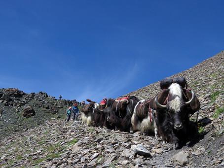 Trek des Alpages