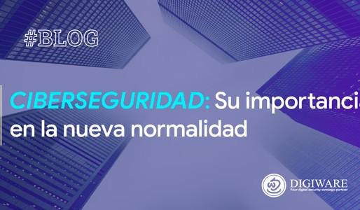 Ciberseguridad: Su importancia en la nueva normalidad