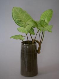 Moon Vase