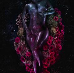 #151 Stardust