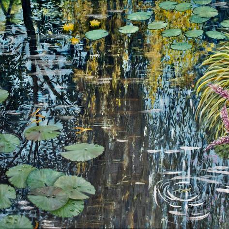 #5 Sky below water lilies